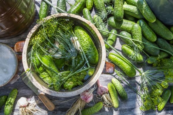 3 вдалих рецепта хрустких малосольних огірків