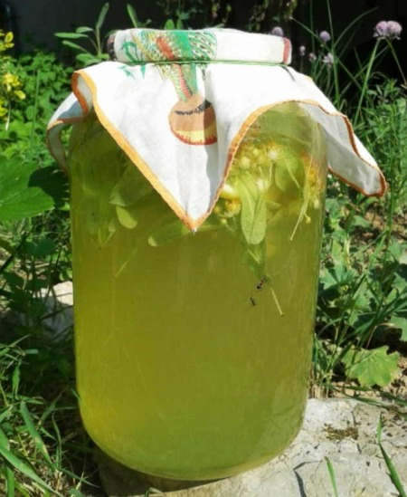 Липовий лимонад - ароматний і смачний, дуже-дуже корисний. У спеку - найкращий напій!