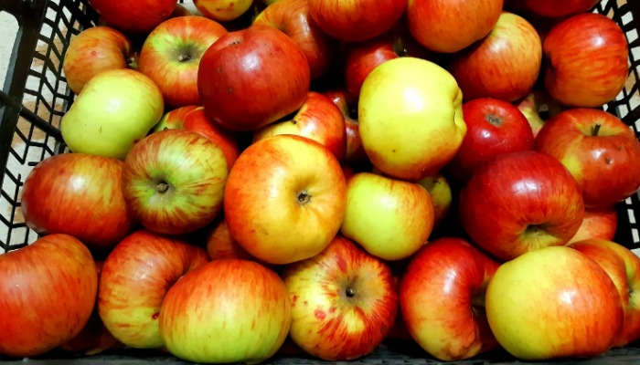 Чому важливо з'їдати по 2 яблука щовечора