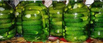 Малосольних огірочків - рецепт приготування
