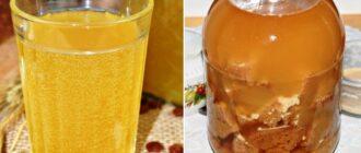 Квас з цикорію - два рецепти
